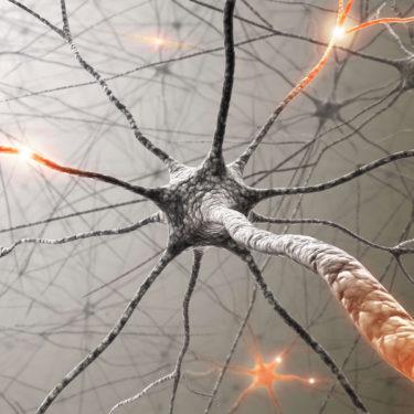 Scenar Nervensystem SCENAR Therapie Lichtrein Gesundheitspraxis